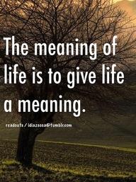 meaningoflife2